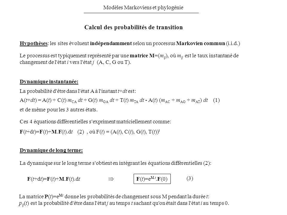 Calcul des probabilités de transition