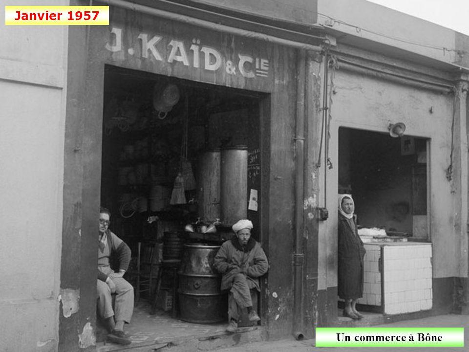 Janvier 1957 Un commerce à Bône