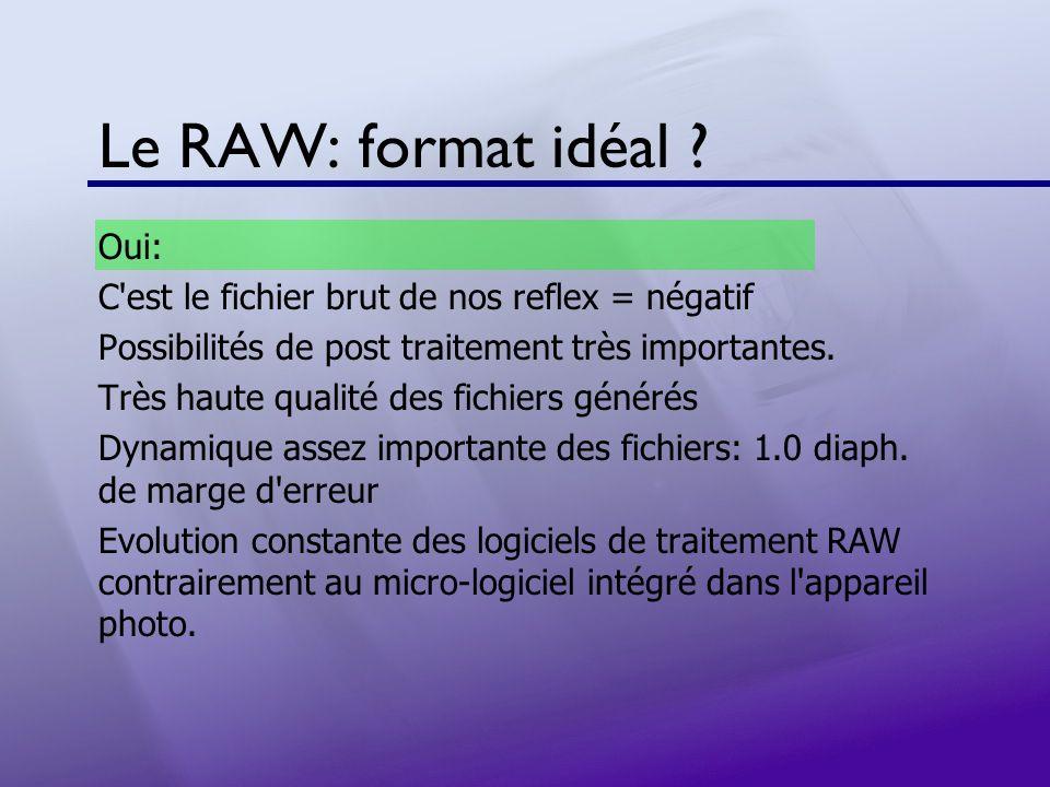 Le RAW: format idéal Oui: