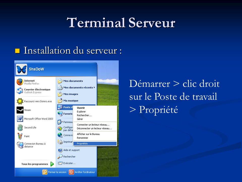 Terminal Serveur Installation du serveur :