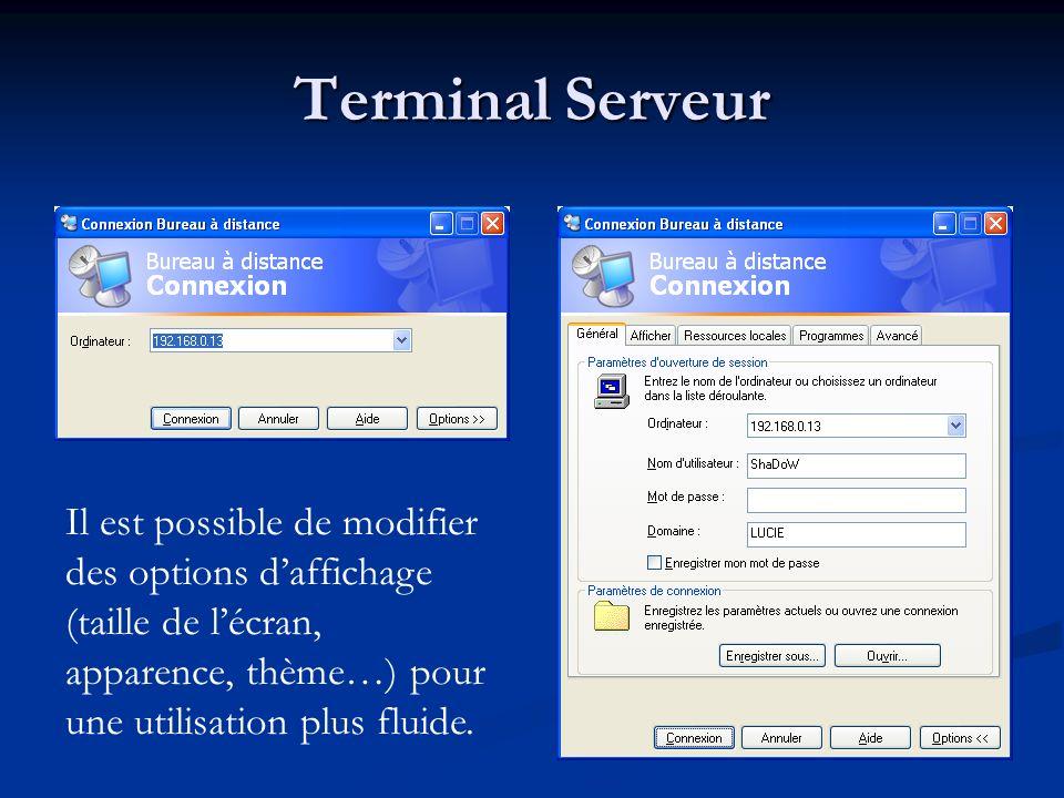 Terminal Serveur Il est possible de modifier des options d'affichage (taille de l'écran, apparence, thème…) pour une utilisation plus fluide.