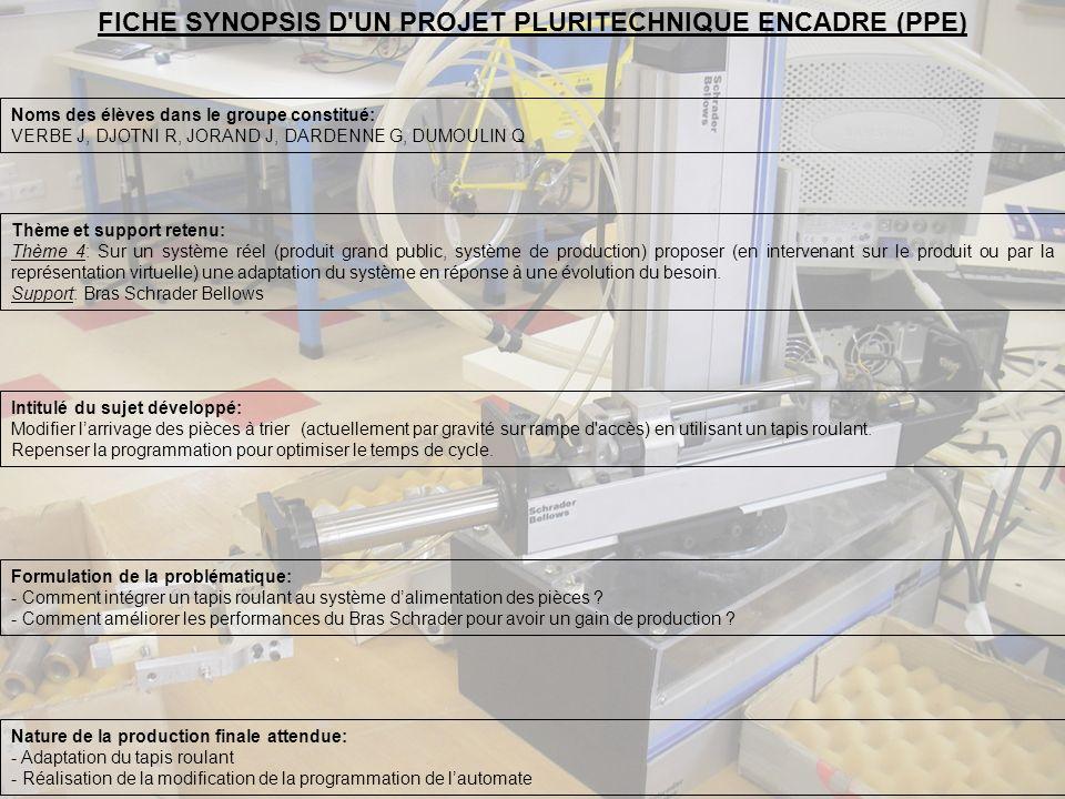 FICHE SYNOPSIS D UN PROJET PLURITECHNIQUE ENCADRE (PPE)