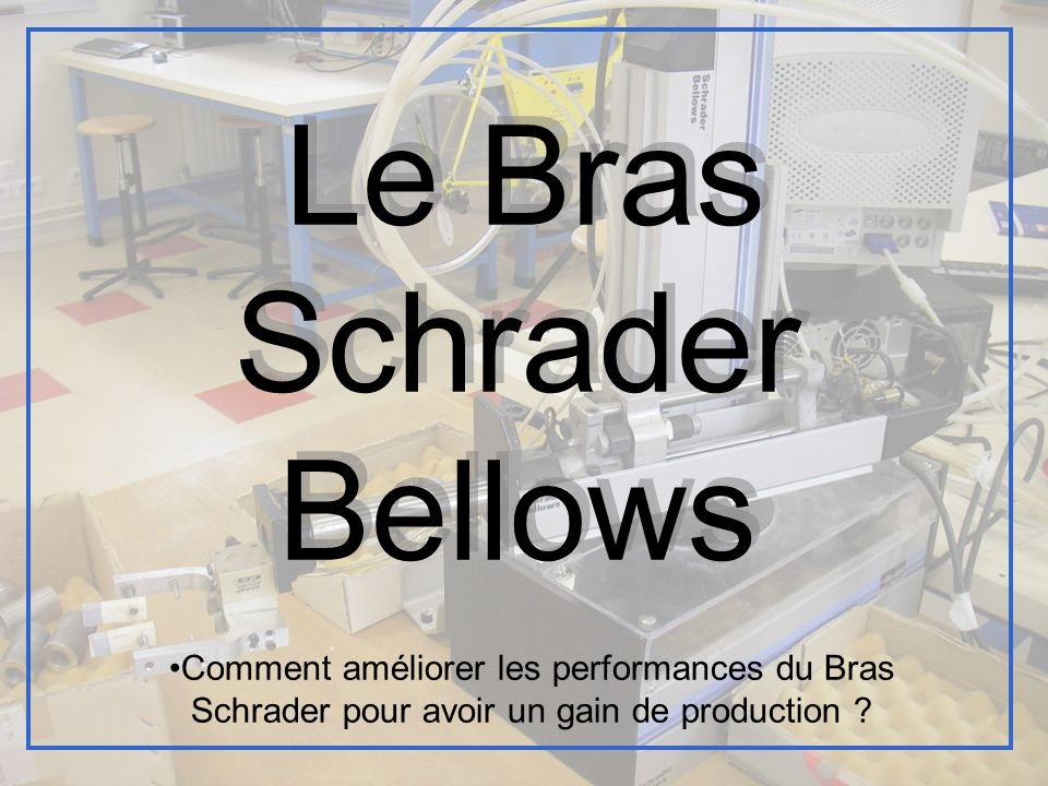 Le Bras Schrader Bellows