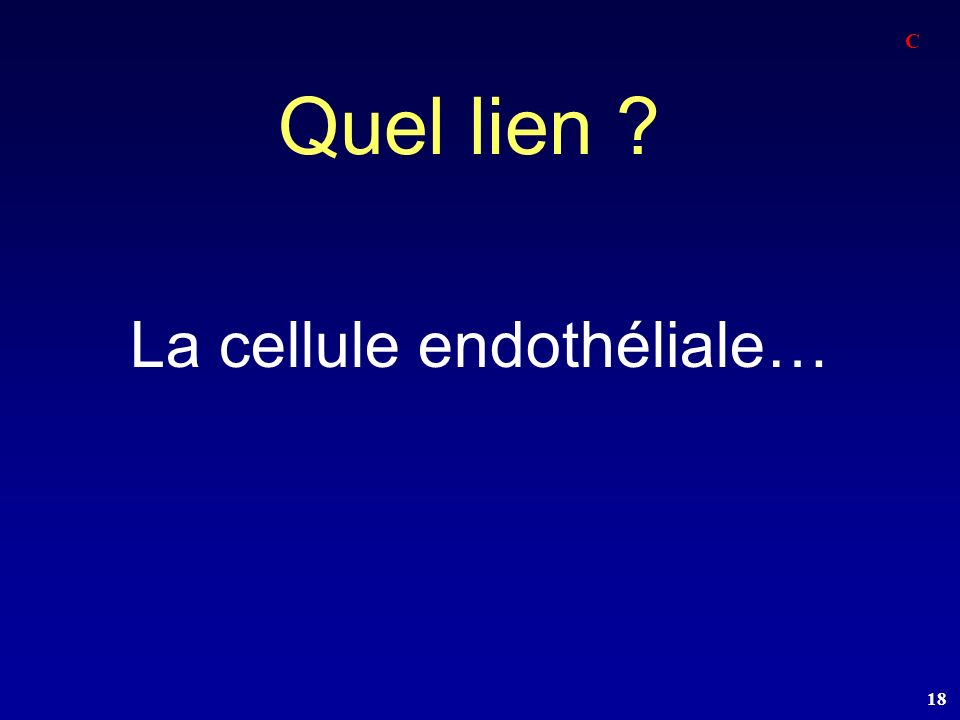 La cellule endothéliale…