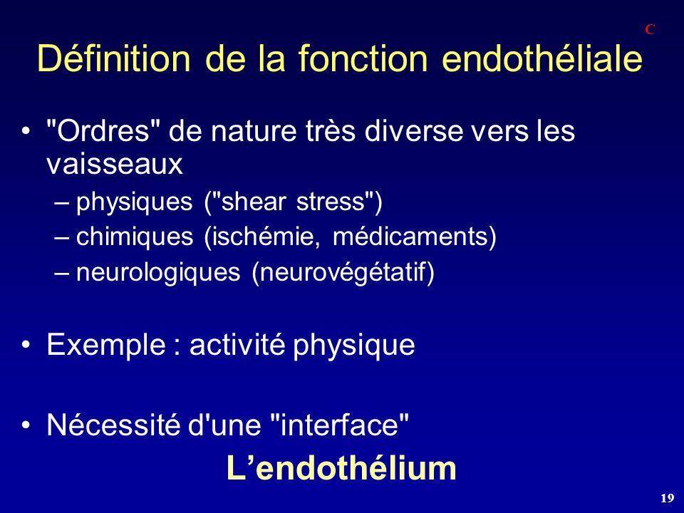 Définition de la fonction endothéliale