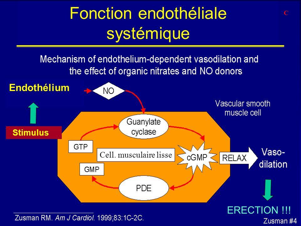 Fonction endothéliale