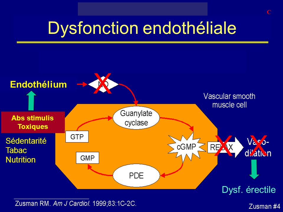 Dysfonction endothéliale