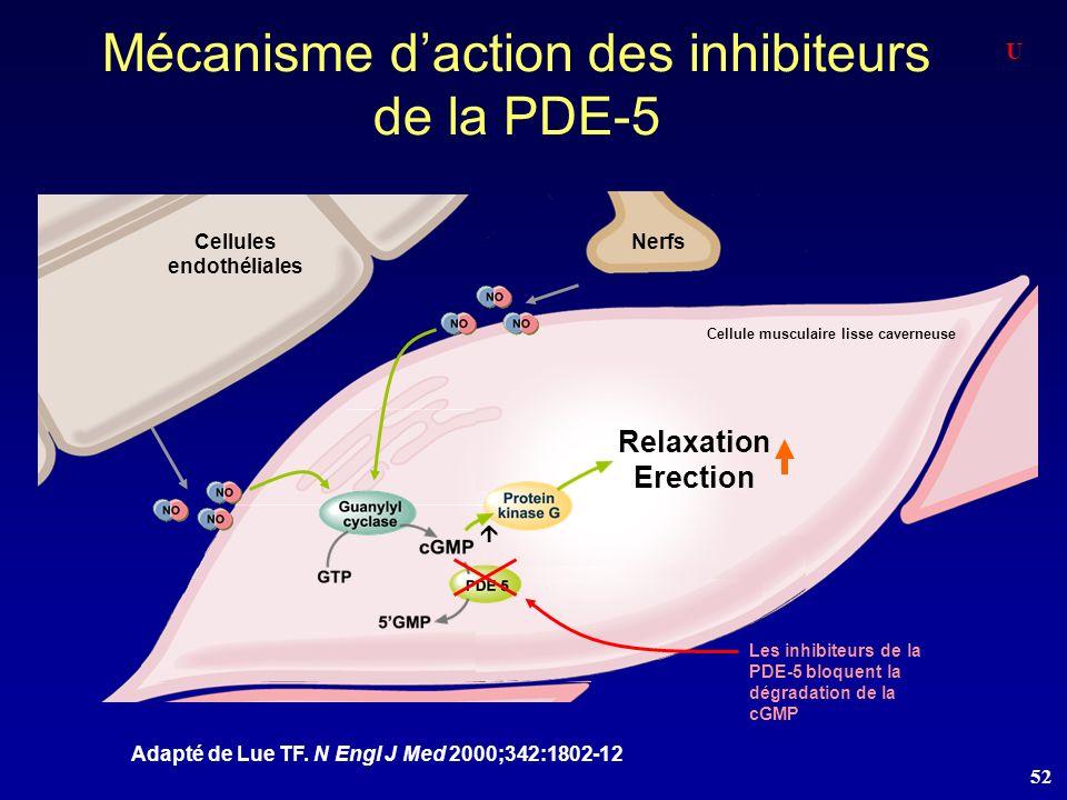 Mécanisme d'action des inhibiteurs de la PDE-5