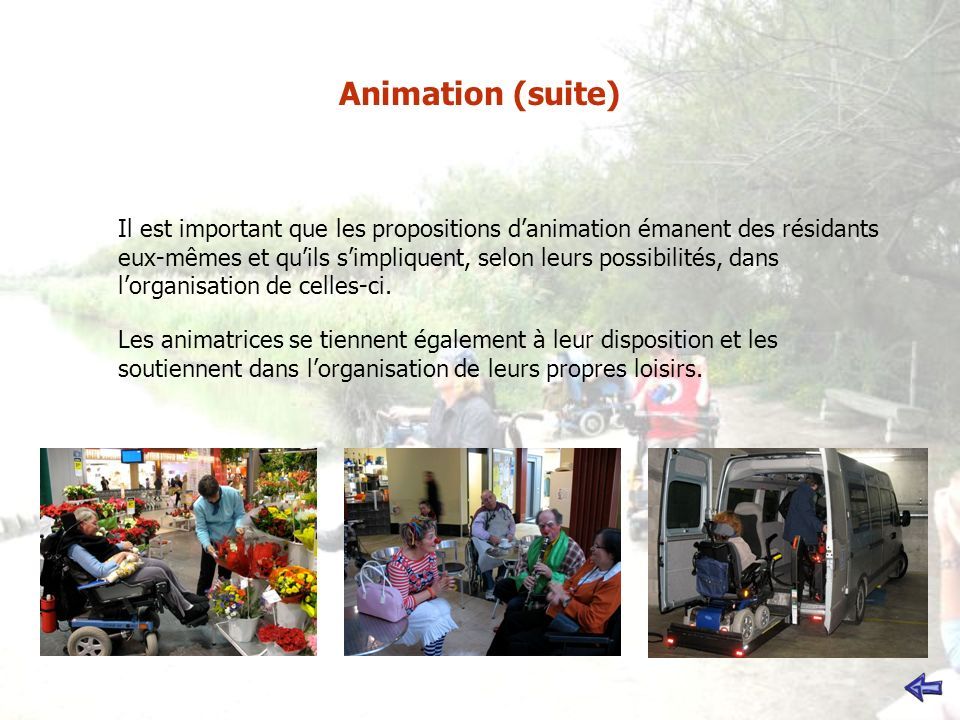 Animation (suite)