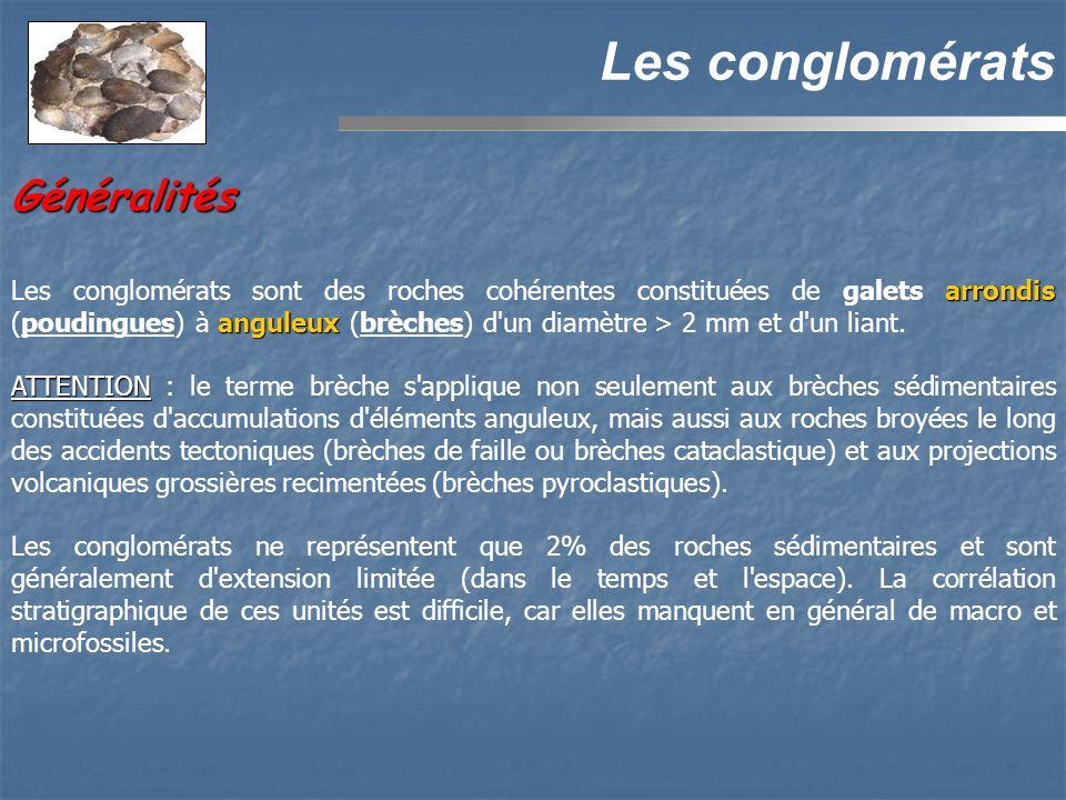 Les conglomérats Généralités