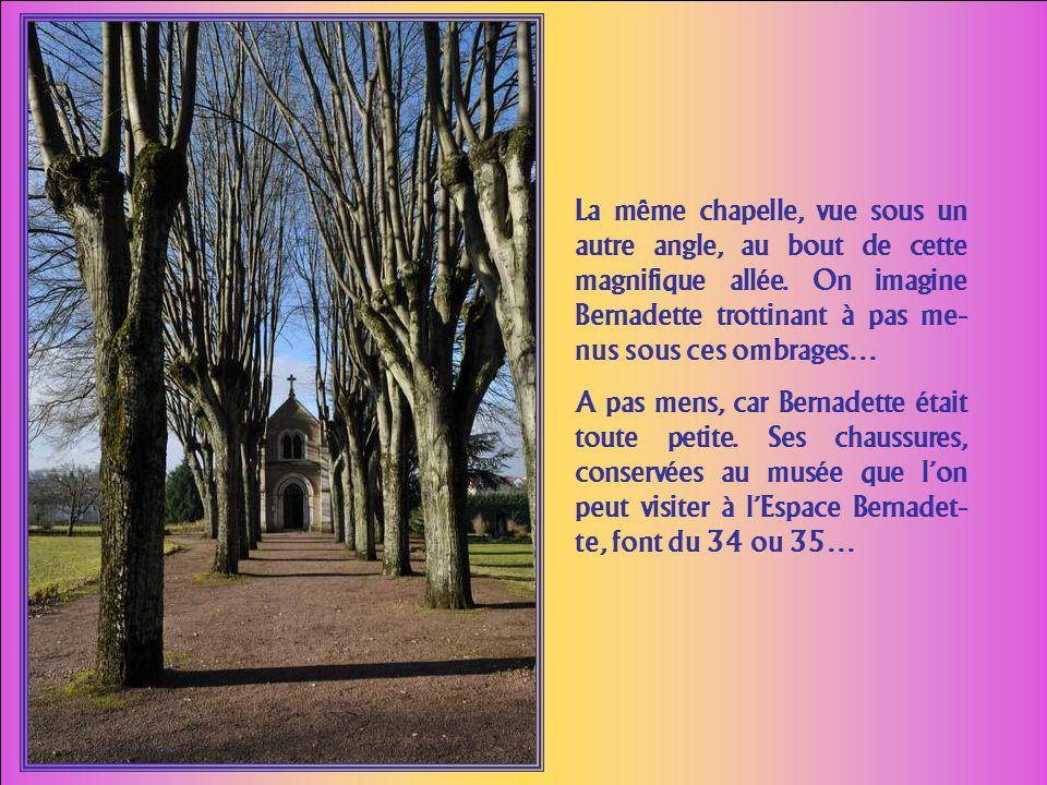 La même chapelle, vue sous un autre angle, au bout de cette magnifique allée. On imagine Bernadette trottinant à pas me-nus sous ces ombrages…