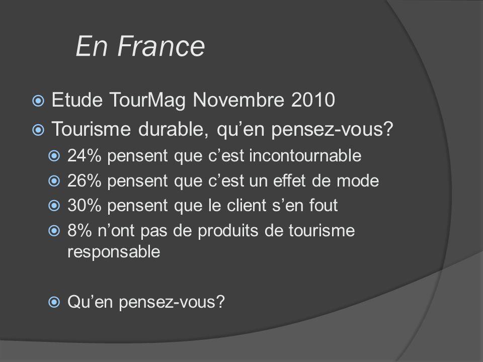 En France Etude TourMag Novembre 2010