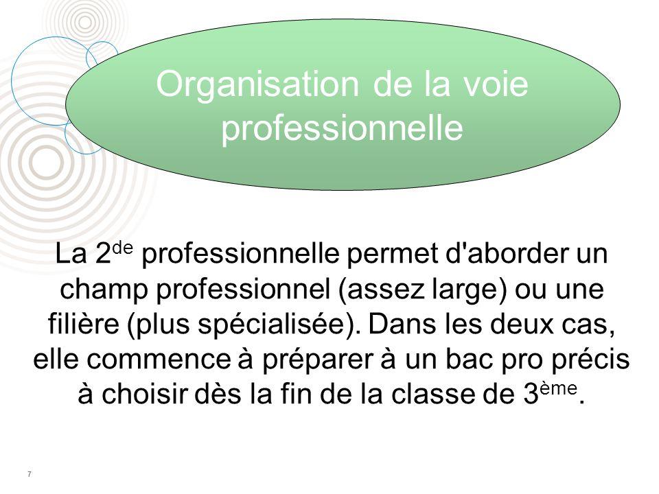Organisation de la voie professionnelle