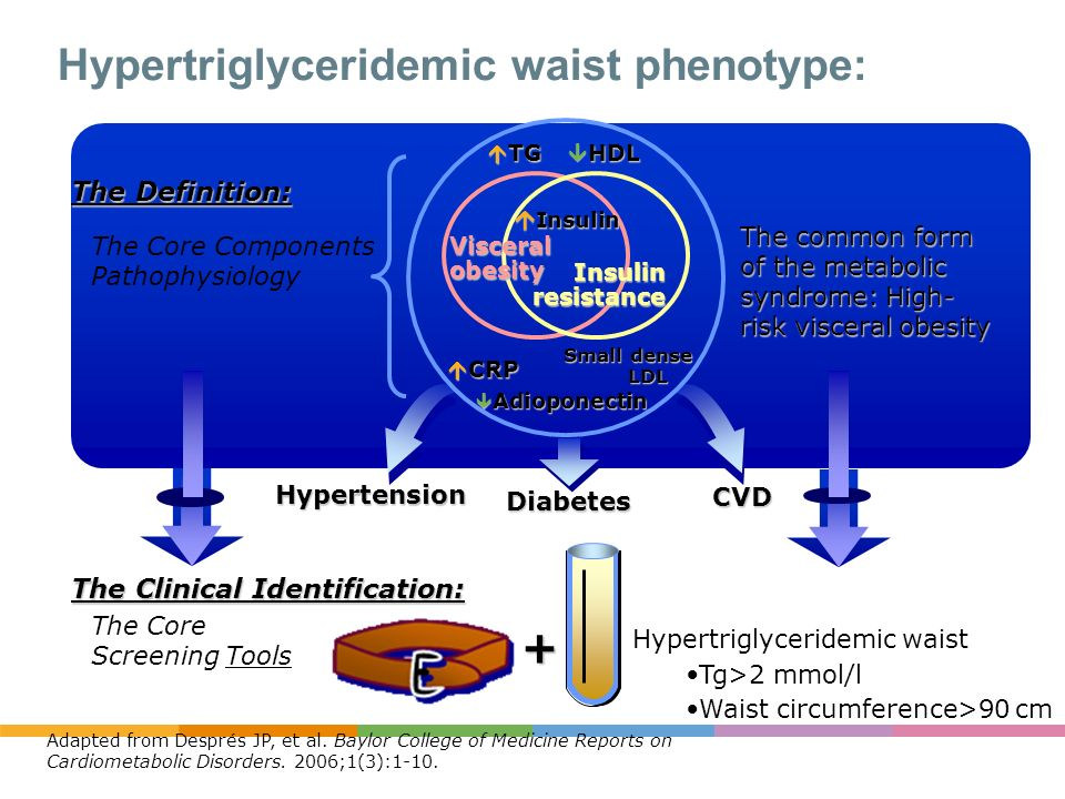 Hypertriglyceridemic waist phenotype: