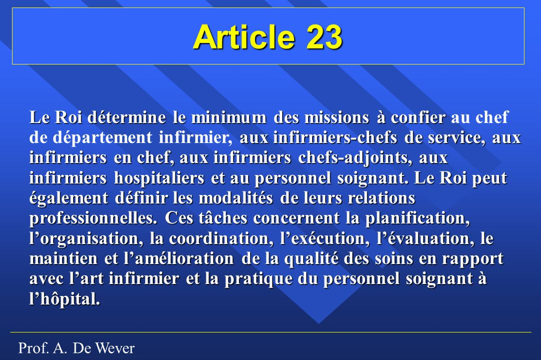 Article 23