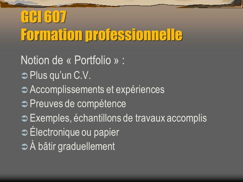 GCI 607 Formation professionnelle