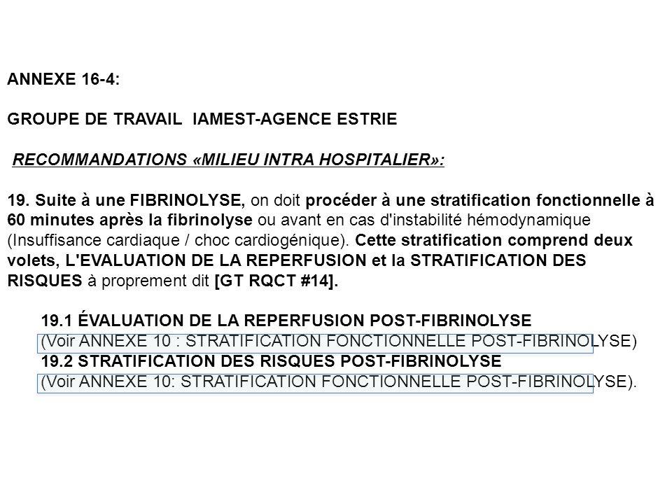 ANNEXE 16-4: GROUPE DE TRAVAIL IAMEST-AGENCE ESTRIE. RECOMMANDATIONS «MILIEU INTRA HOSPITALIER»: