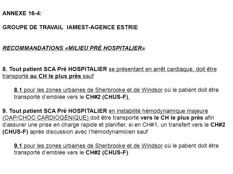 ANNEXE 16-4: GROUPE DE TRAVAIL IAMEST-AGENCE ESTRIE. RECOMMANDATIONS «MILIEU PRÉ HOSPITALIER»