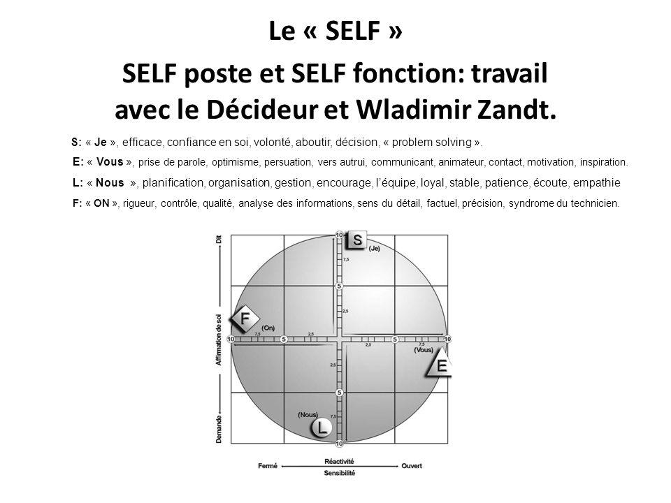 Le « SELF » SELF poste et SELF fonction: travail avec le Décideur et Wladimir Zandt.