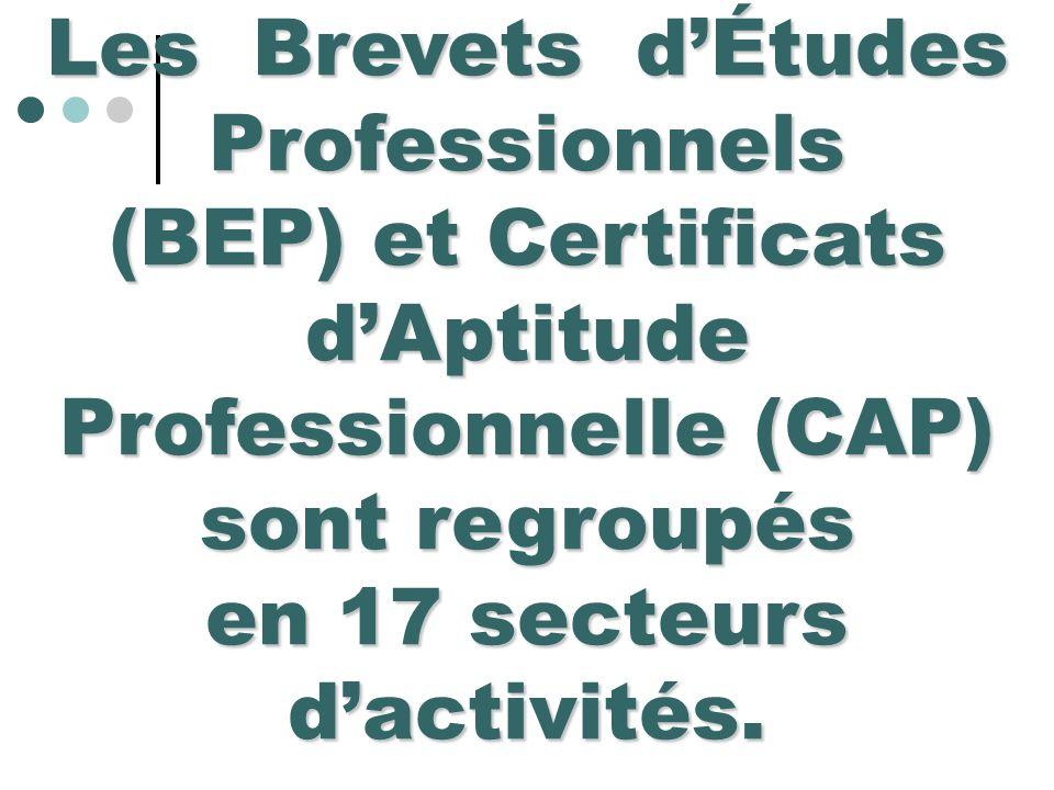 Les Brevets d'Études Professionnels en 17 secteurs d'activités.