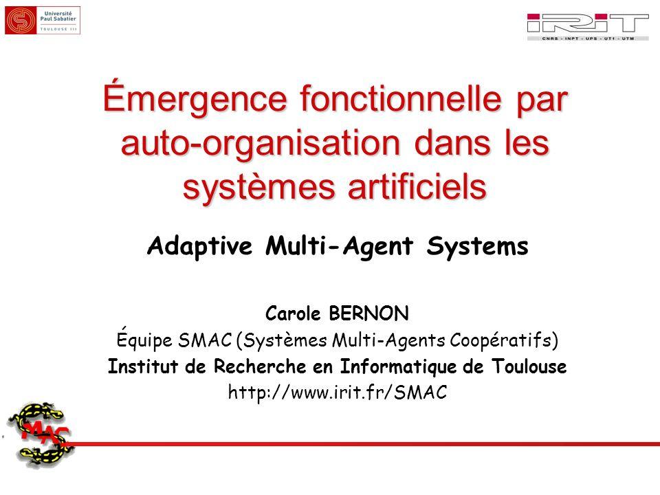 Émergence fonctionnelle par auto-organisation dans les systèmes artificiels