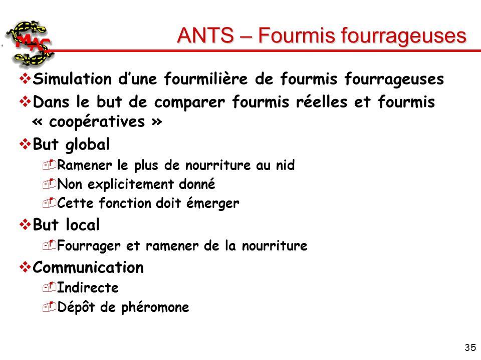 ANTS – Fourmis fourrageuses