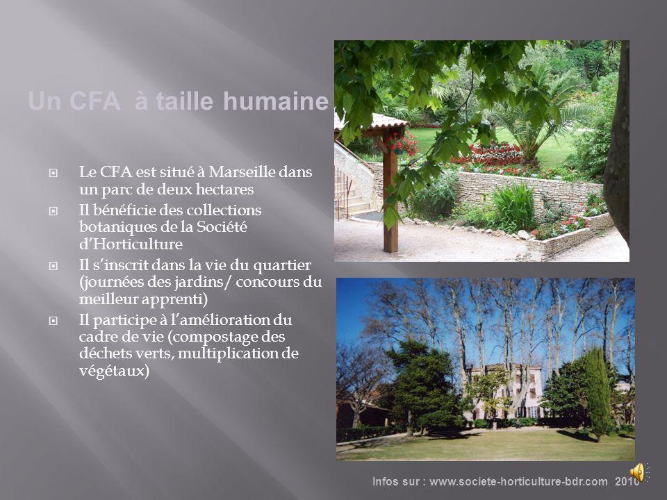 Un CFA à taille humaine Le CFA est situé à Marseille dans un parc de deux hectares.