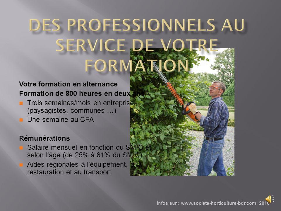 DES PROFESSIONNELS AU SERVICE DE VOTRE FORMATION