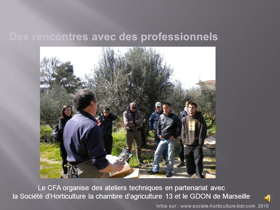 Le CFA organise des ateliers techniques en partenariat avec