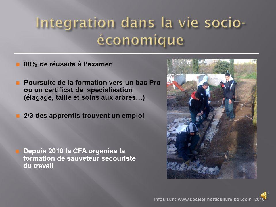 Integration dans la vie socio-économique