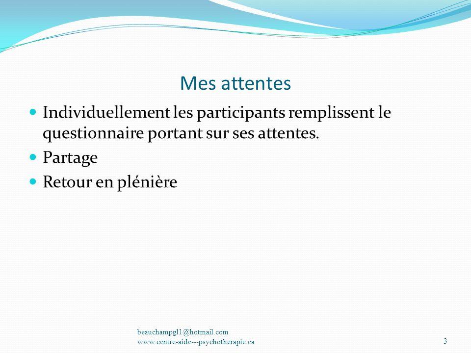 Mes attentes Individuellement les participants remplissent le questionnaire portant sur ses attentes.