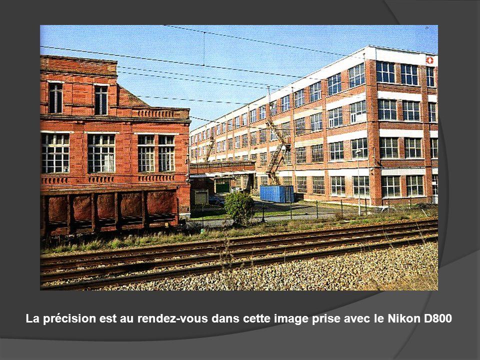 La précision est au rendez-vous dans cette image prise avec le Nikon D800