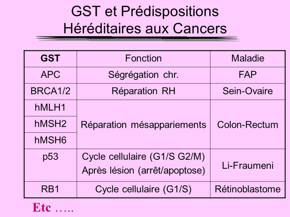 GST et Prédispositions Héréditaires aux Cancers