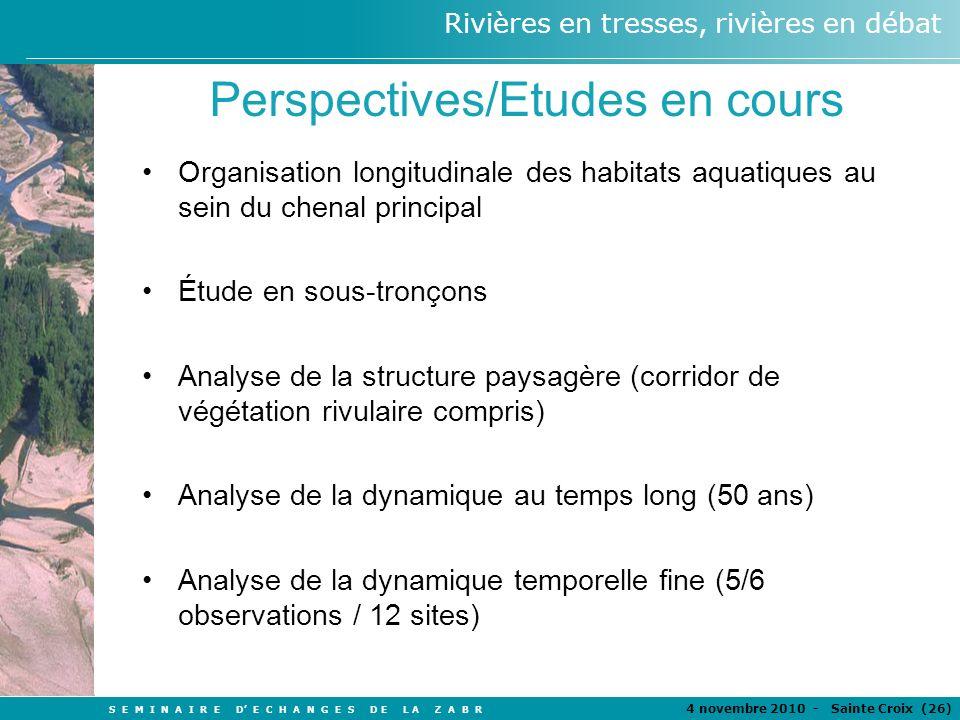 Perspectives/Etudes en cours