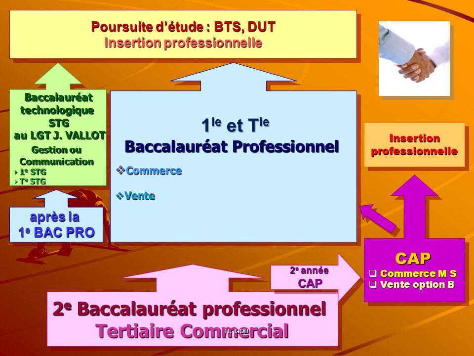 Poursuite d'étude : BTS, DUT Insertion professionnelle