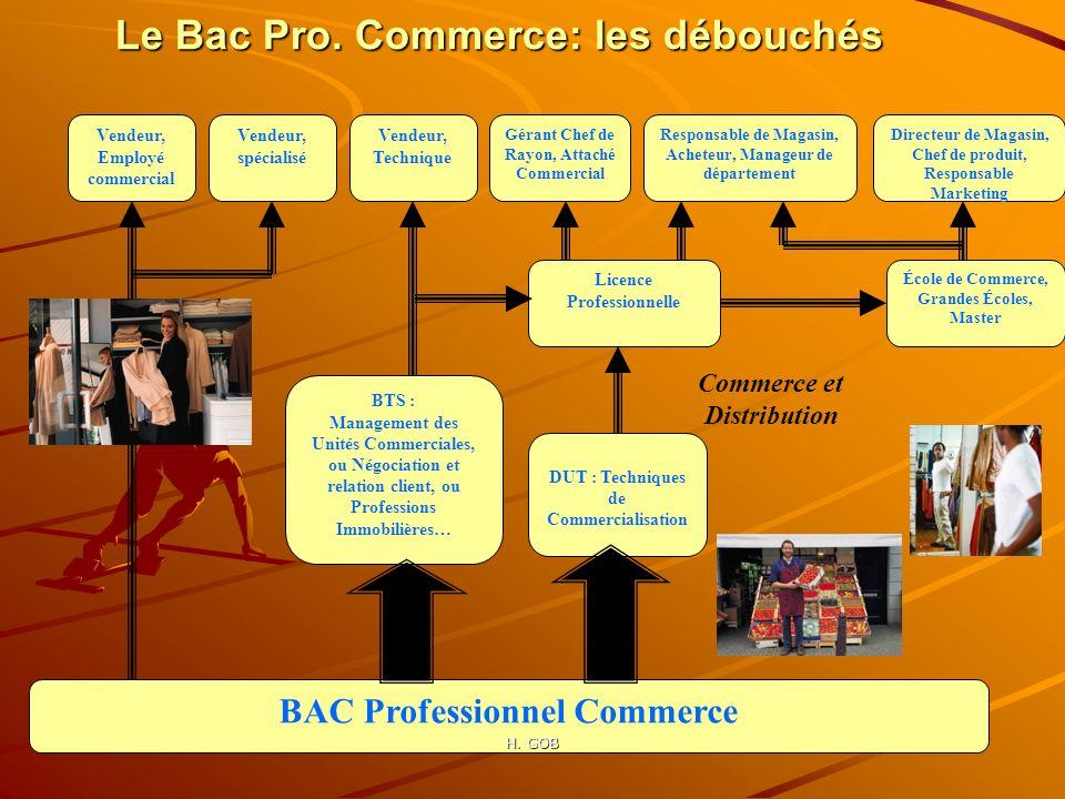Le Bac Pro. Commerce: les débouchés
