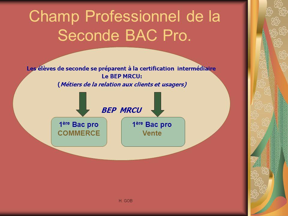 Champ Professionnel de la Seconde BAC Pro.
