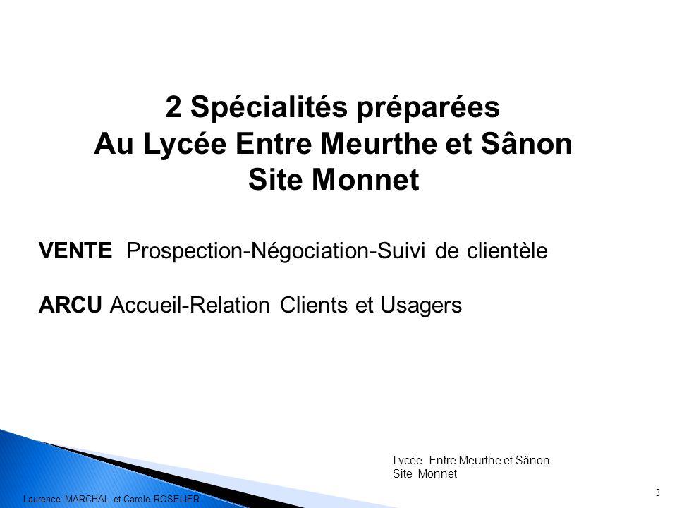 2 Spécialités préparées Au Lycée Entre Meurthe et Sânon