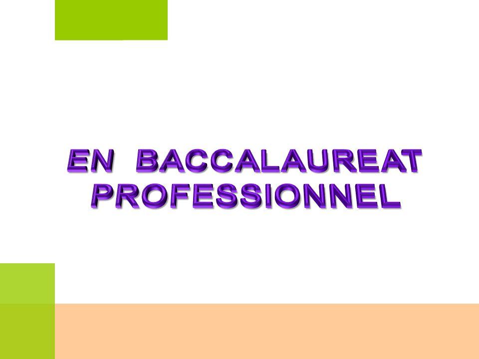 EN BACCALAUREAT PROFESSIONNEL