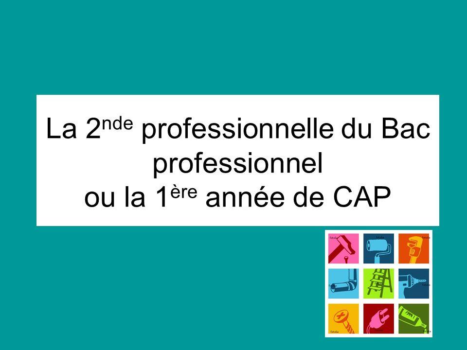 La 2nde professionnelle du Bac professionnel ou la 1ère année de CAP