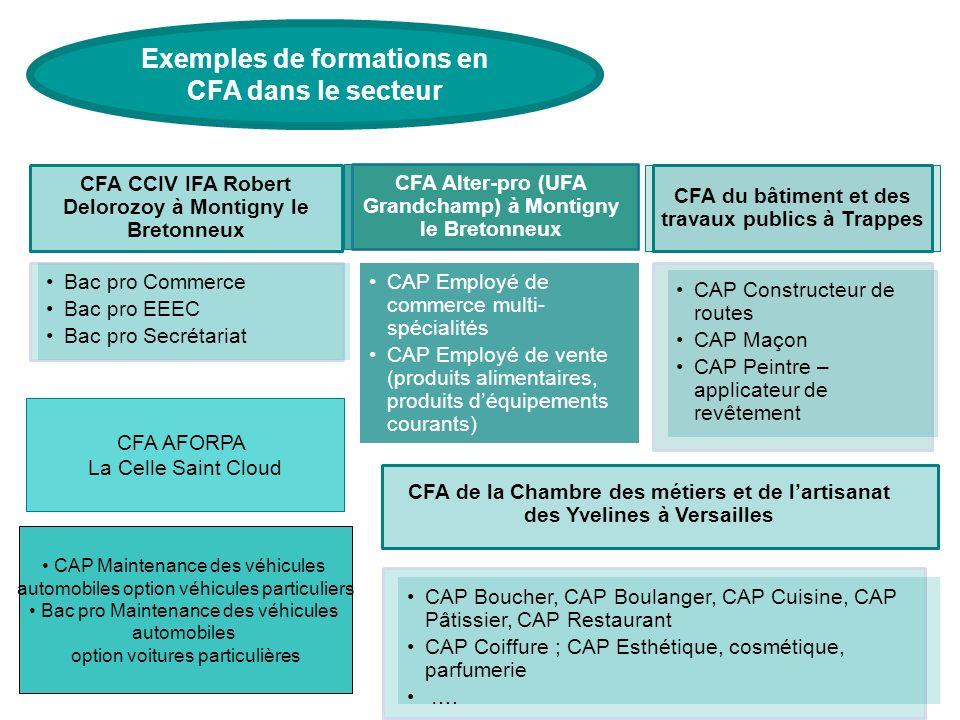 Exemples de formations en CFA dans le secteur