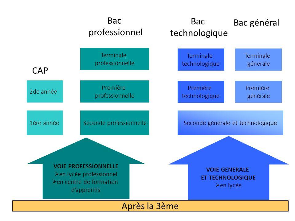 Bac général Bac Bac professionnel technologique CAP Après la 3ème