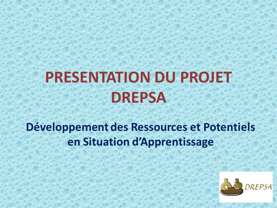 PRESENTATION DU PROJET DREPSA