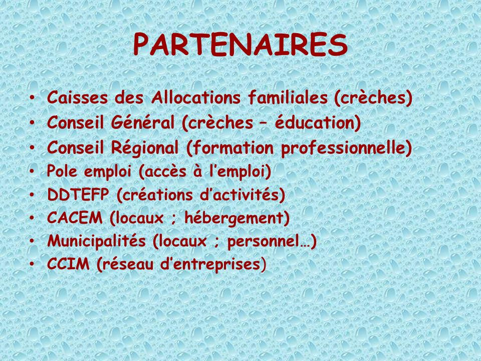 PARTENAIRES Caisses des Allocations familiales (crèches)