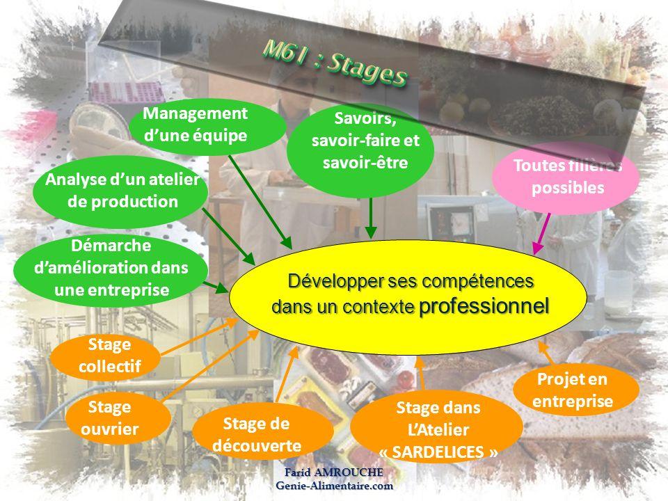 M61 : Stages Management Savoirs, d'une équipe savoir-faire et