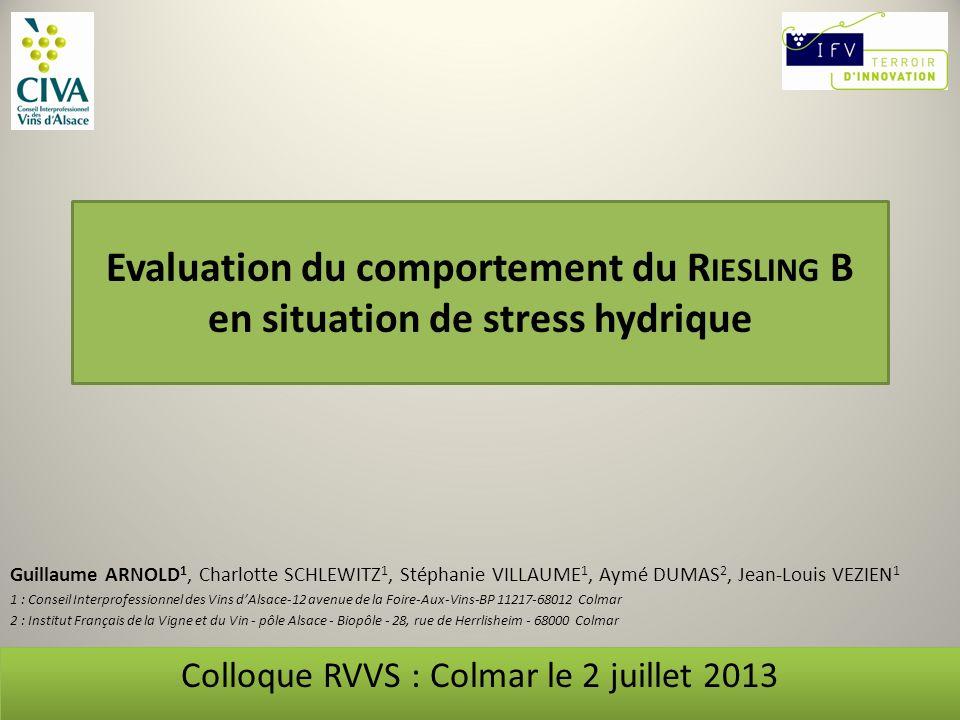 Colloque RVVS : Colmar le 2 juillet 2013
