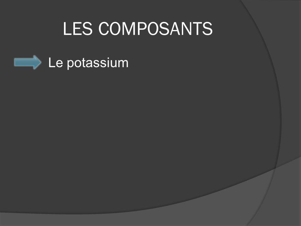 LES COMPOSANTS Le potassium