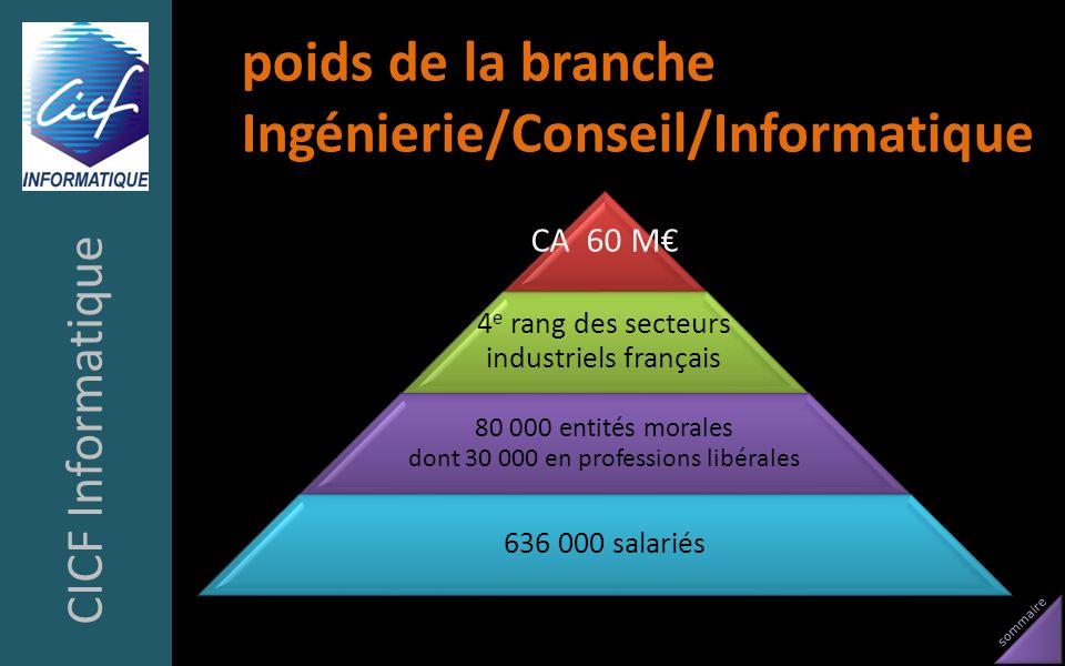poids de la branche Ingénierie/Conseil/Informatique