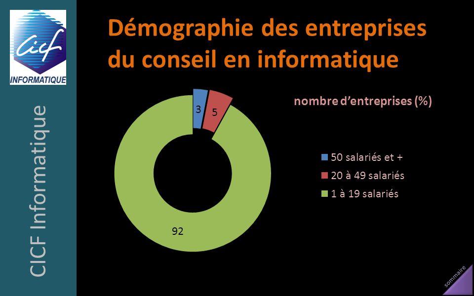 Démographie des entreprises du conseil en informatique