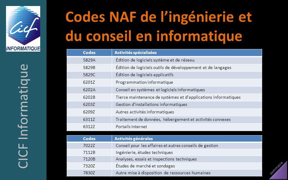 Codes NAF de l'ingénierie et du conseil en informatique